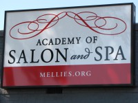 Academy of Salon and Spa