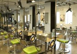 Parisian Beauty School